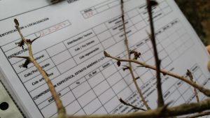 Servicios Inventarios Forestales