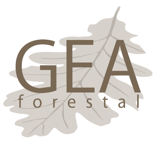 GEA Forestal