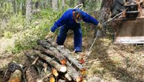 Actuación Forestal Ablanque