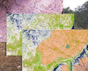 Cartografía SIG
