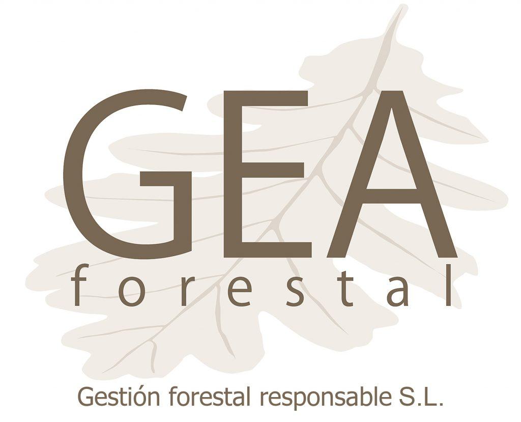 Consultoria forestal